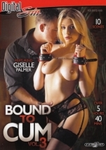 裏DVD DIGITAL SIN BOUND TO CUM 3 DISC-1